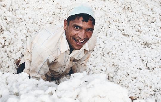 Organic Fairtrade Cotton for T-Shirts